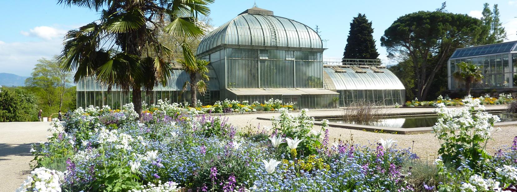 association des amis du jardin botanique - Jardin Botanique Geneve